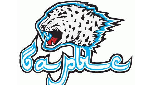 Barys logo