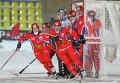 Россия обыграла Швецию в финале ЧМ по хоккею с мячом